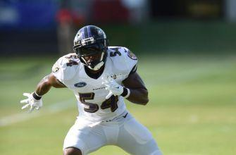 Ravens linebacker Orr retires at 24 with spinal injury