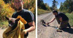 Fire Crew Stumbles Upon Scared, Abandoned Dog