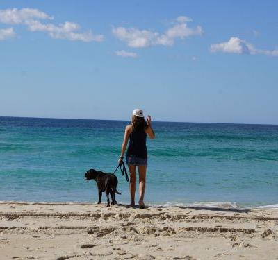 There's a pet-sitting service that lets you vacation around the world for free - here's how it works