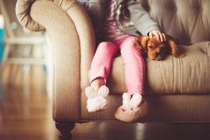 5 Tips For Raising A Friendly Dog