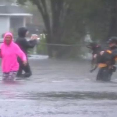 Reporter rescues dog trapped by Florence floodwaters in North Carolina