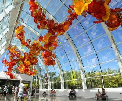 Seattle Museum Month Offers Big Savings with 50 Percent Off Admission to Museums