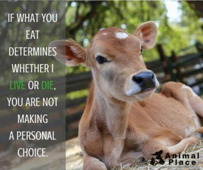 When you choose what to eat, you are choosing whether or not to