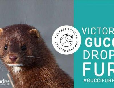 Reactions to Gucci going fur-free