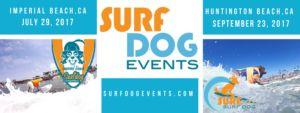 Rovers to Ride the Waves at Surf City Surf Dog Competition