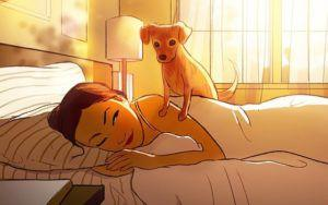 Artist's Drawings Remind Us To Appreciate The Little Moments With Our Dogs