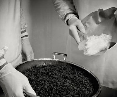Sustainable Caviar: An Interview with Calvisius