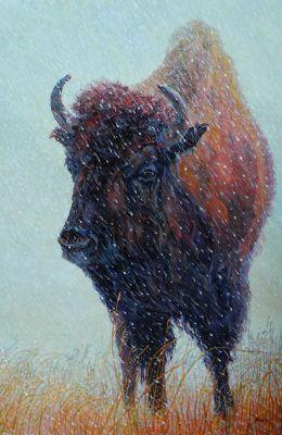 """Bison,Western Wildlife Fine Art Painting """"Turner"""" by Western Masters Artist Patricia A. Griffin"""