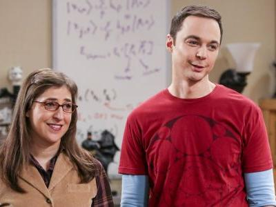 Big Bang Theory: 10 Things On Amy And Sheldon's Relationship Contract