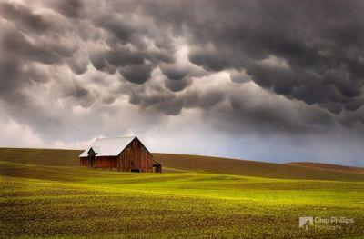 Disappearing Barns of the Palouse