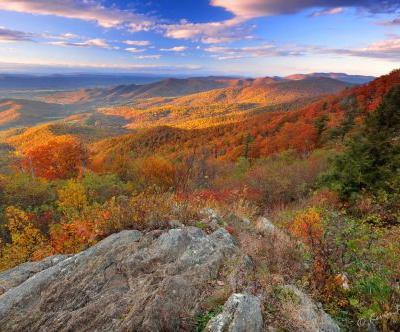 8 Reasons Why We LOVE Fall in Virginia
