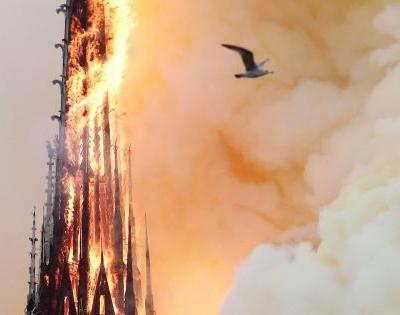 Haunting photos of the Notre Dame Cathedral's charred remains show what's left on the inside