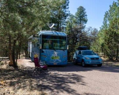 Sharp Creek Campground Review - Tonto National Forest, Arizona