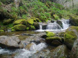 Laciana Valley, sustainable destination to be discovered at FITUR