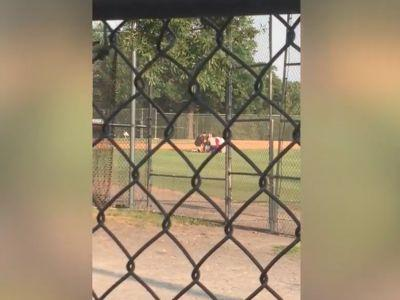 Video shows the chaos when James Hodgkinson opened fire on the GOP congressional baseball practice