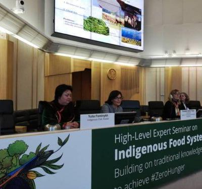 Indigenous Peoples Paving the Way: High-Level Expert Seminar at FAO