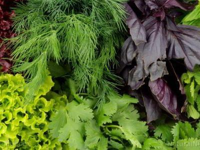 Macular degeneration may be prevented by simply eating more leafy greens