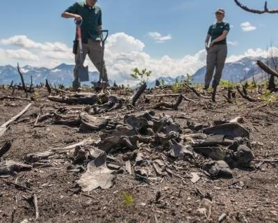 Archeologists uncover new history in Waterton Lakes National Park after 2017 wildfire