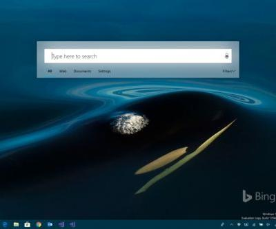 Windows 10 search could soon look just like macOS'