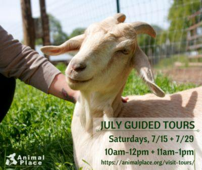 Join us on an upcoming guided tour and meet our rescued