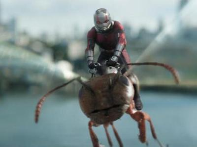How Ant-Man And The Wasp Will Operate Next To Avengers: Infinity War, According To Peyton Reed