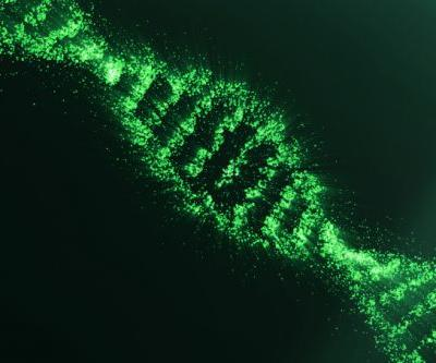 Bio-programming toolkit maker Asimov launches with $4.5M from Andreessen Horowitz