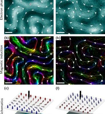 Non-Crystal Clarity: Scientists Find Ordered Magnetic Patterns in Disordered Magnetic Material