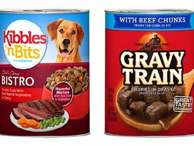 Pet Alert: Euthanasia Drug Found in Wet Dog Food