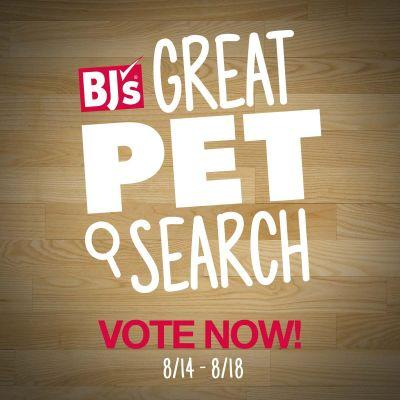 Vote For Your Favorite Dog In BJ's Great Pet Search!