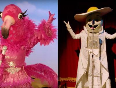 Who Is On 'The Masked Singer' Season 2? The New Promo Shows The New Masked Celebs