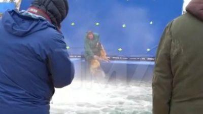 "Rescue Groups Cancel ""A Dog's Purpose"" Screenings - Do You Plan to See It? Or Will You Boycott?"