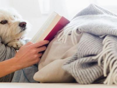 Women Sleep Better With Dogs In Their Bed Than With Men In Their Bed