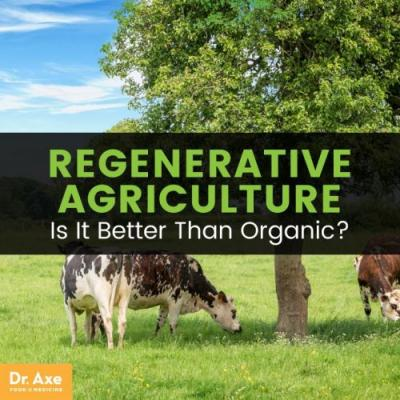 Regenerative Agriculture: Principles, Pioneers + Does It Really Work?