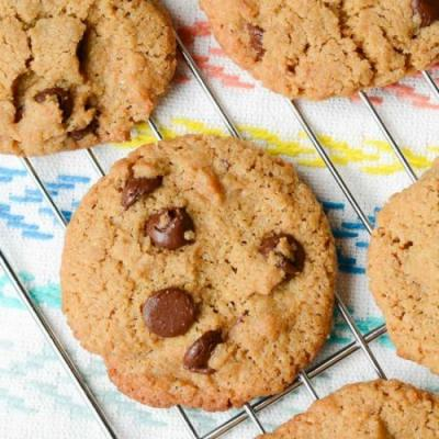 Chocolate Chip Sunbutter Cookies