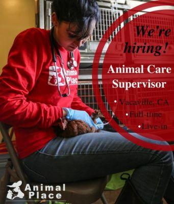 Join our dedicated team Animal Place's rescue and adoption