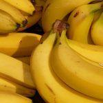 Bananapocalypse: The race to save the world's most popular fruit