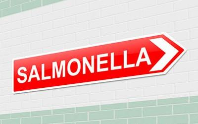 Salmonella Algona outbreak in England linked to other counties: source unknown