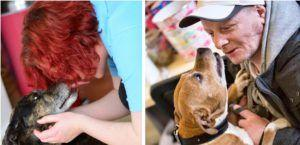 This Young Vet Runs A Clinic Providing Free Care To Homeless People's Dogs