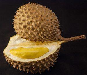 With Chromosome-Scale Resolution, Draft Durian Genome Explains Smelly Fruit