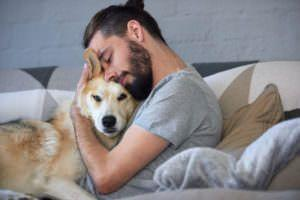 12 Most Snuggly Dog Breeds