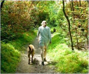 Dog Walking Boosts Physical Activity in Older Adults