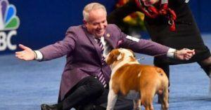 Thor's Outstanding Attitude Helps Him Win The 2019 National Dog Show
