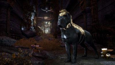 Elder Scrolls Online: Morrowind - here's a closer look at the pre-order bonuses, especially the Dwarven War Dog