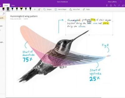 OneNote desktop app end-of-lifed, replaced with Windows 10 UWP