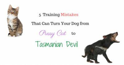 5 Training Mistakes That Can Turn Your Dog from Pussy Cat to Tasmanian Devil