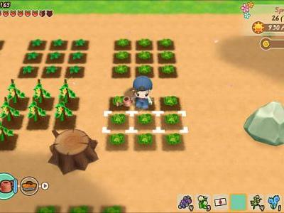 SoS: Friends of Mineral Town Crop Guide