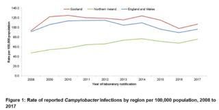 U.K. sees rise in Campylobacter, Salmonella cases