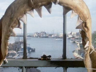 10 Hidden Details You Never Noticed In Jaws | ScreenRant