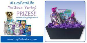 A Sneak Peek at the LucyPet4Life Prizes!