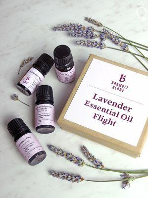 New Limited Edition Lavender Essential Oil Flight